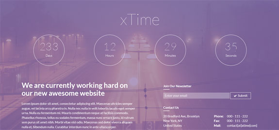xtheme wordpress theme