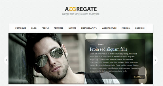aggregate elegant themes