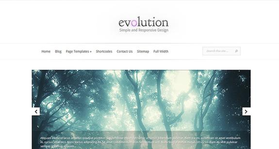 Elegant-Themes-Evolution_575x308