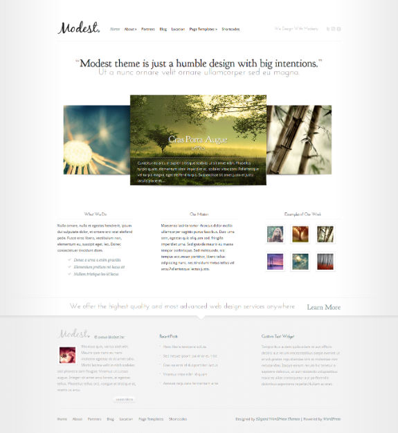 Modest Theme - Just another WordPress site 2014-01-26 07-31-28