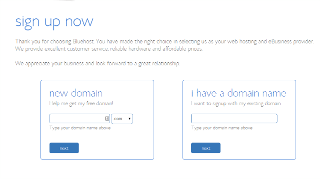 Bluehost Hosting Review and Setup Guide