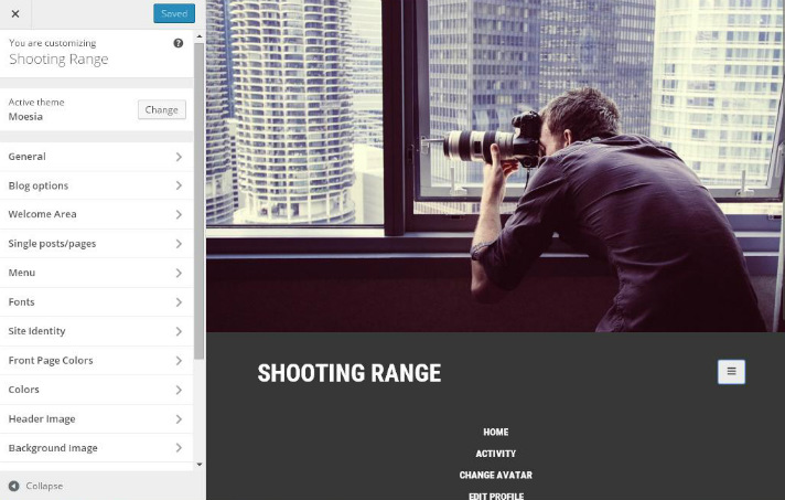 best-free-wordpress-themes-moesia-theme-options