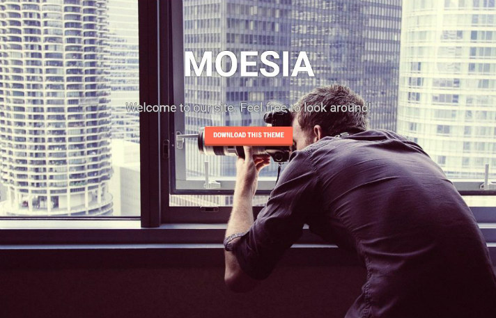 best-free-wordpress-themes-moesia