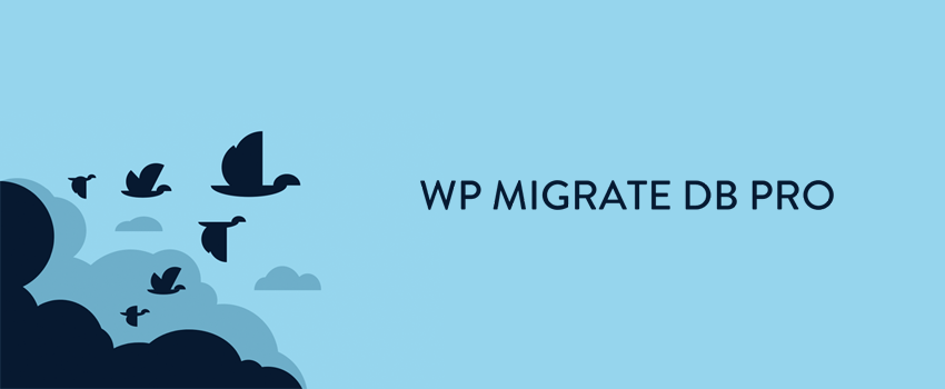 WP Migrate DB Pro Review – Simple WordPress Database Migration
