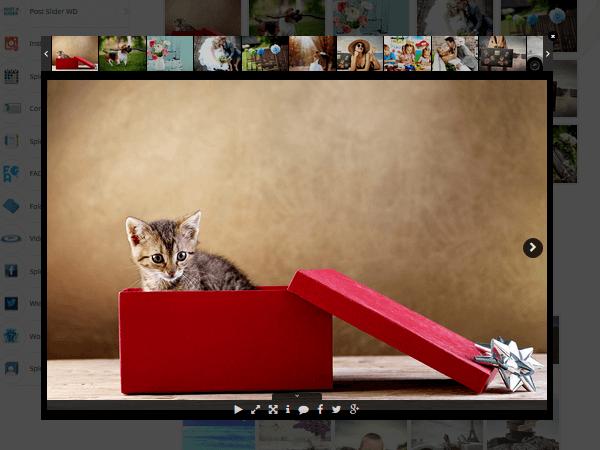 Photo Gallery - Example