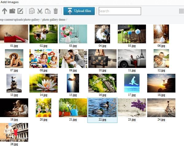 Photo Gallery - Upload Images