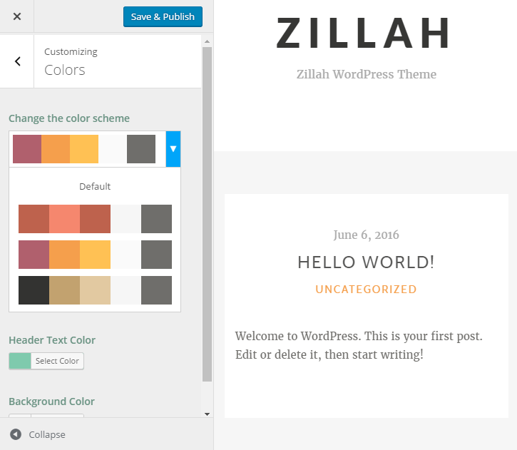 Zillah Review Customizer Colors
