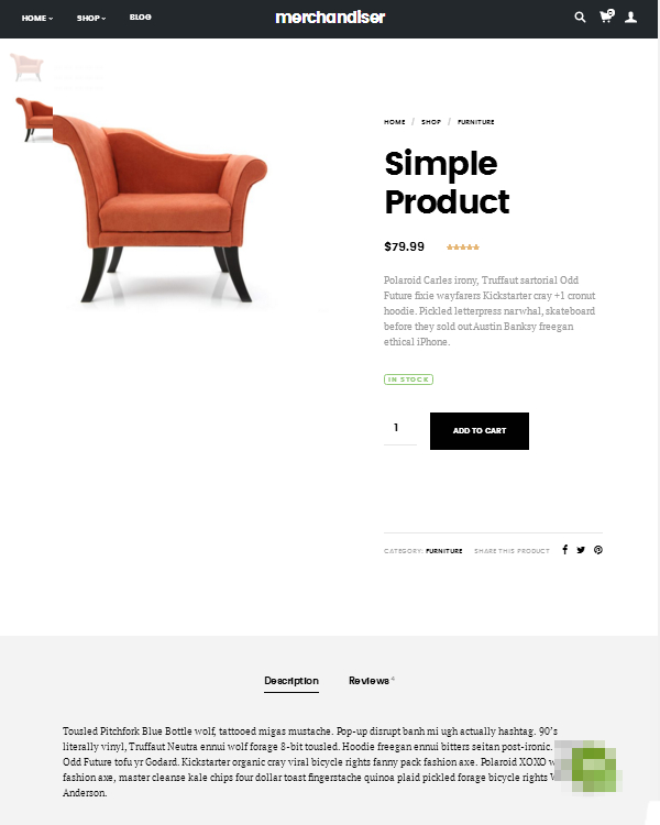 Merchandiser Simple Product Page