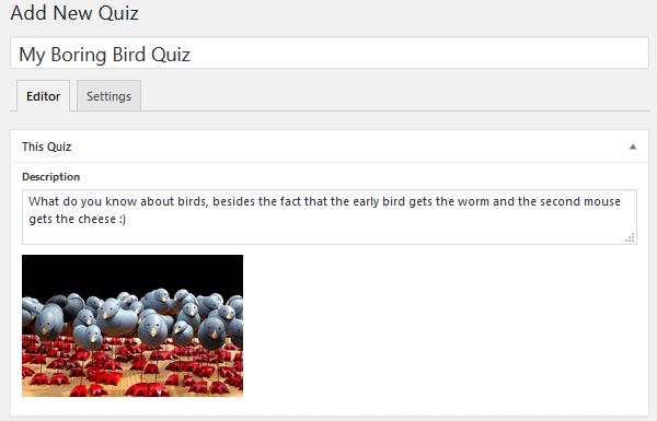quiz-cat-quiz-title-description-image