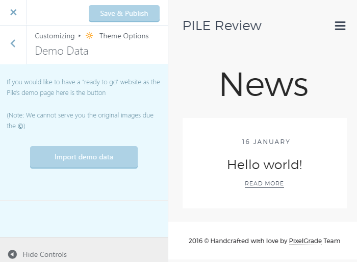 PILE Review Demo Import 01
