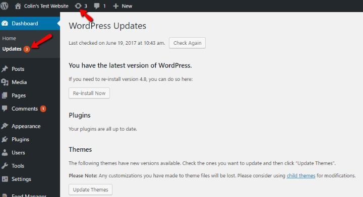 wordpress maintenance tips update