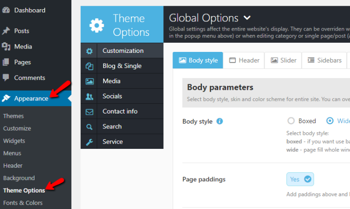 an example of a custom theme options panel