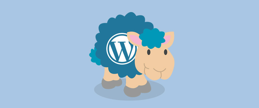 What is WordPress? A Beginner's Guide!