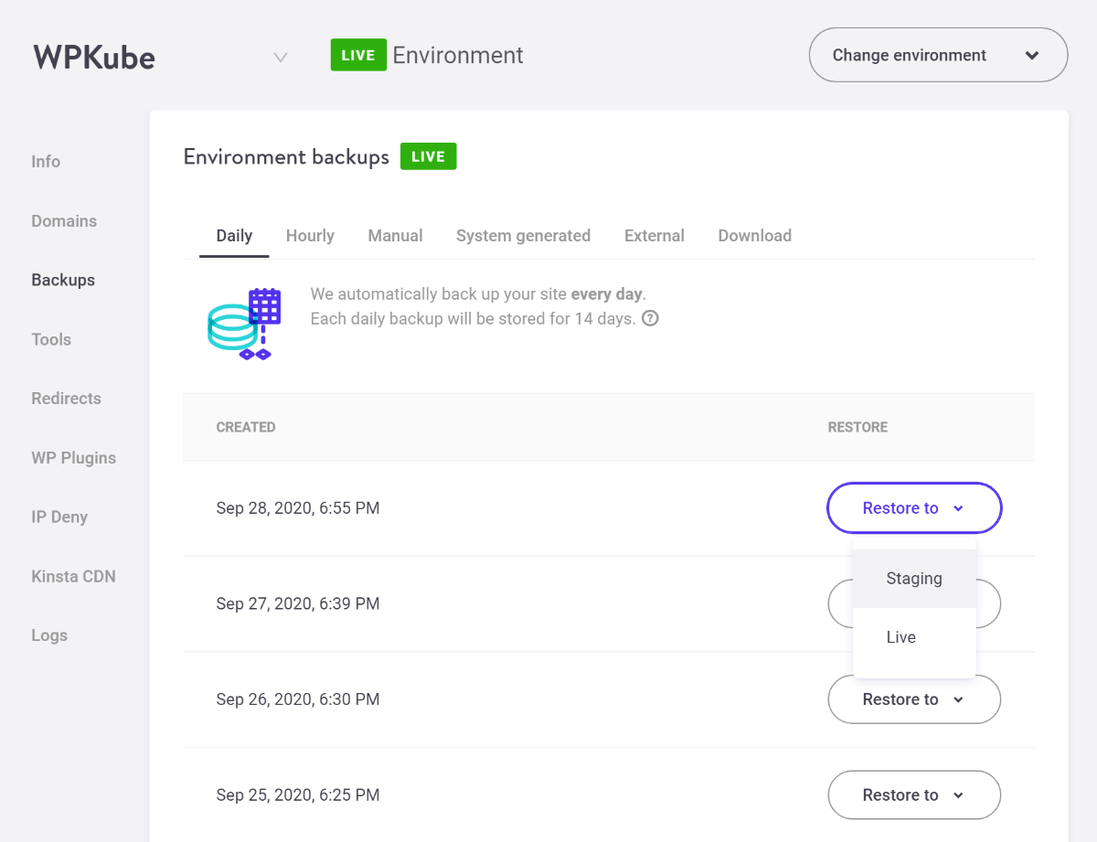 Kinsta backups tools