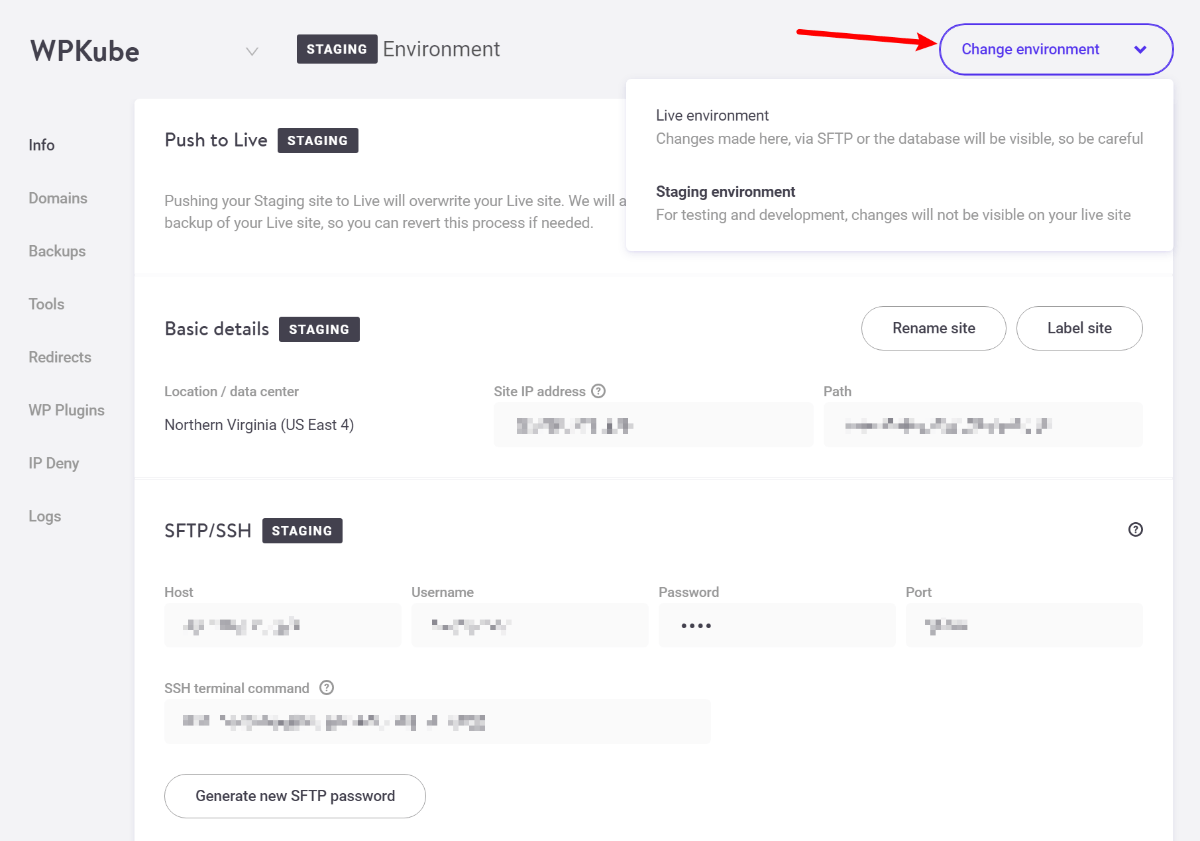Kinsta staging sites