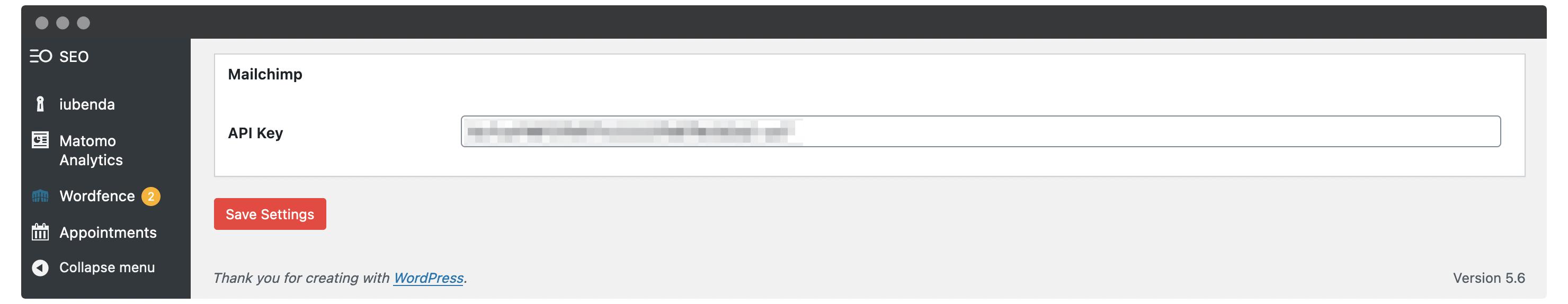 Adding an API key within WordPress.