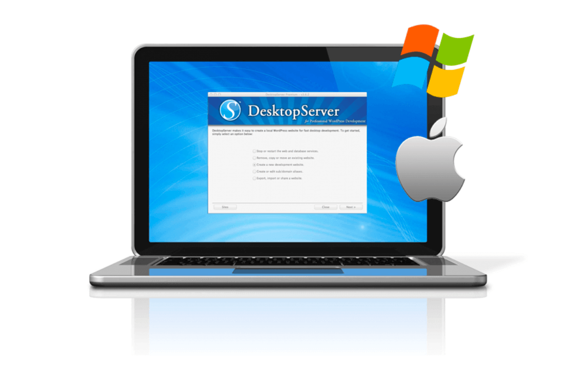 The DesktopServer tool.