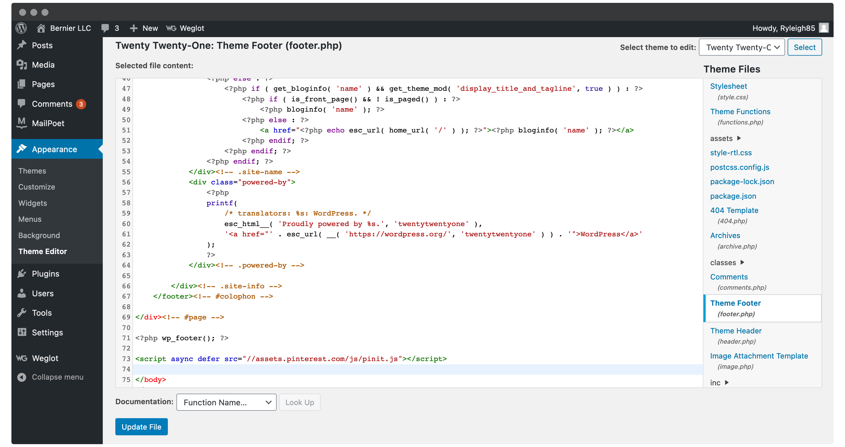 Adding code to the Theme Footer file within WordPress.