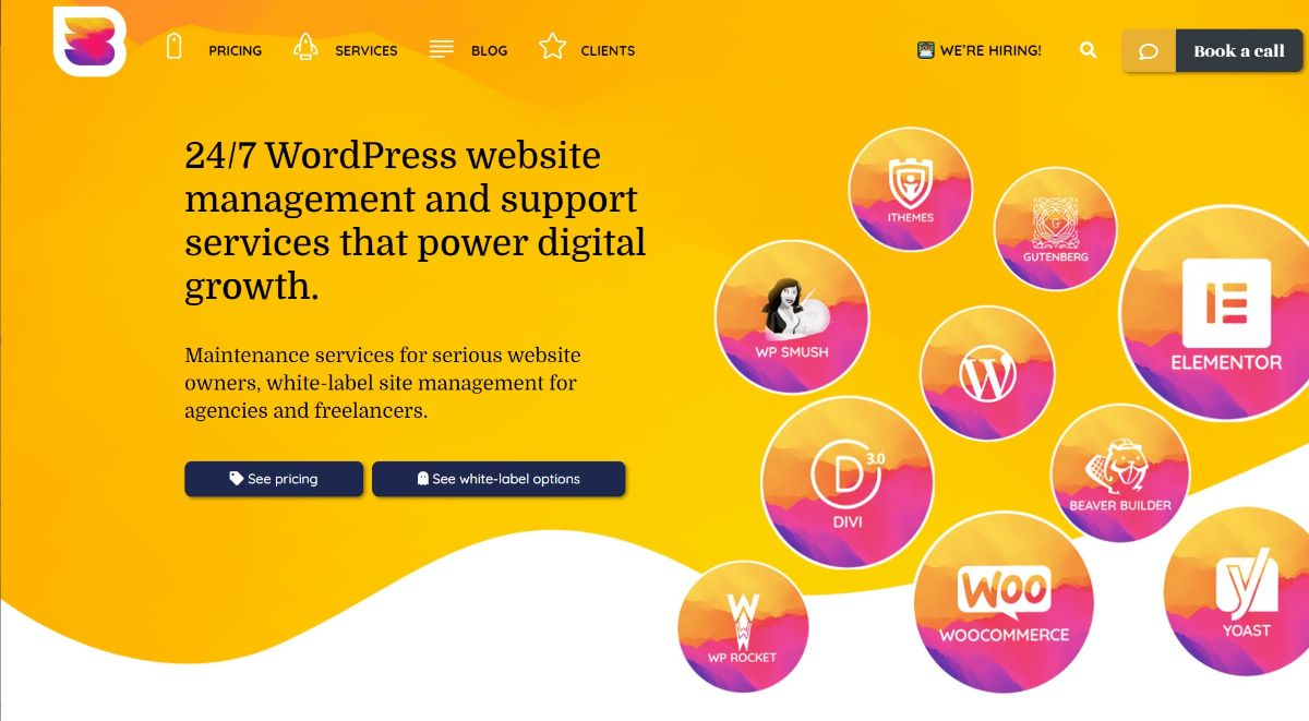 WP Buffs is one of the best WordPress maintenance services