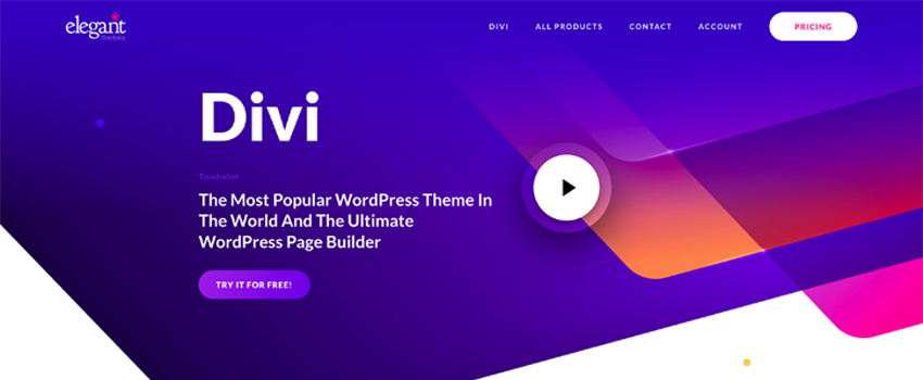16 Examples of Awesome Websites Built with Divi (2021)