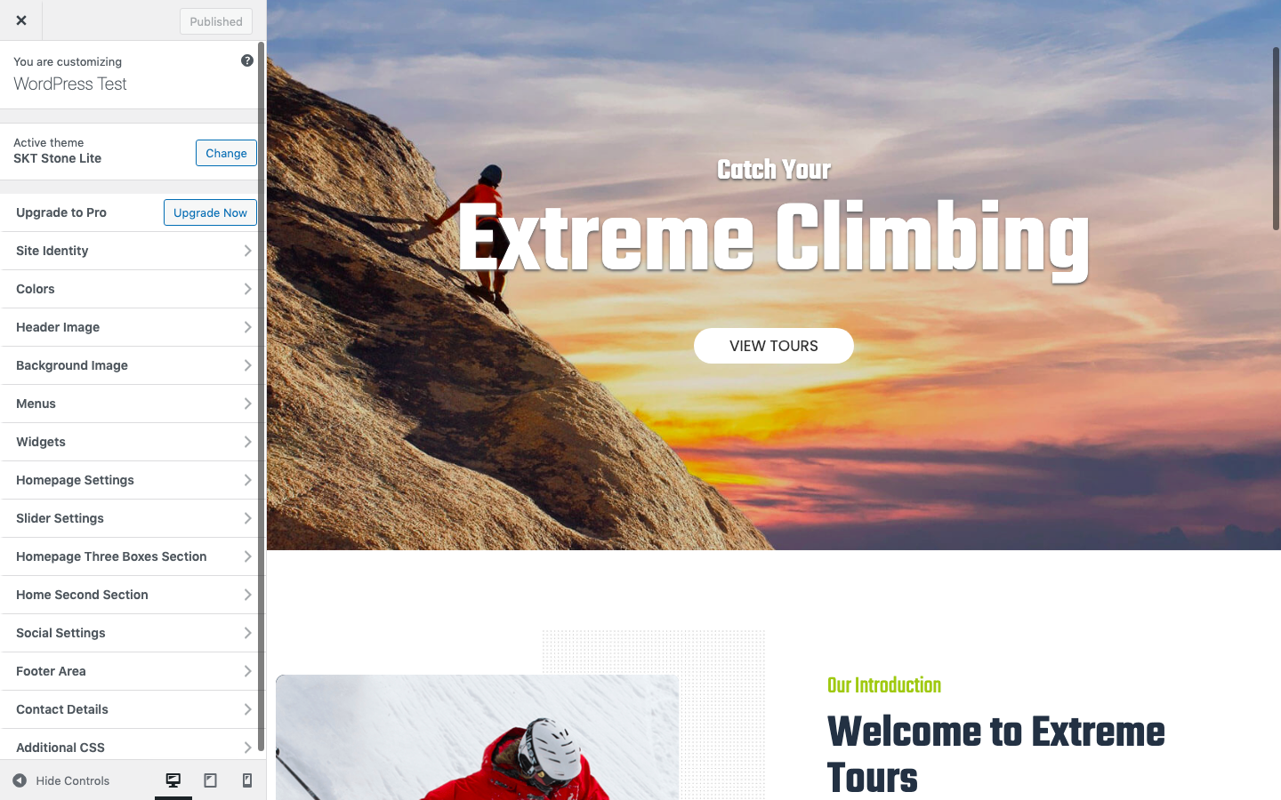 Preview in WordPress customizer