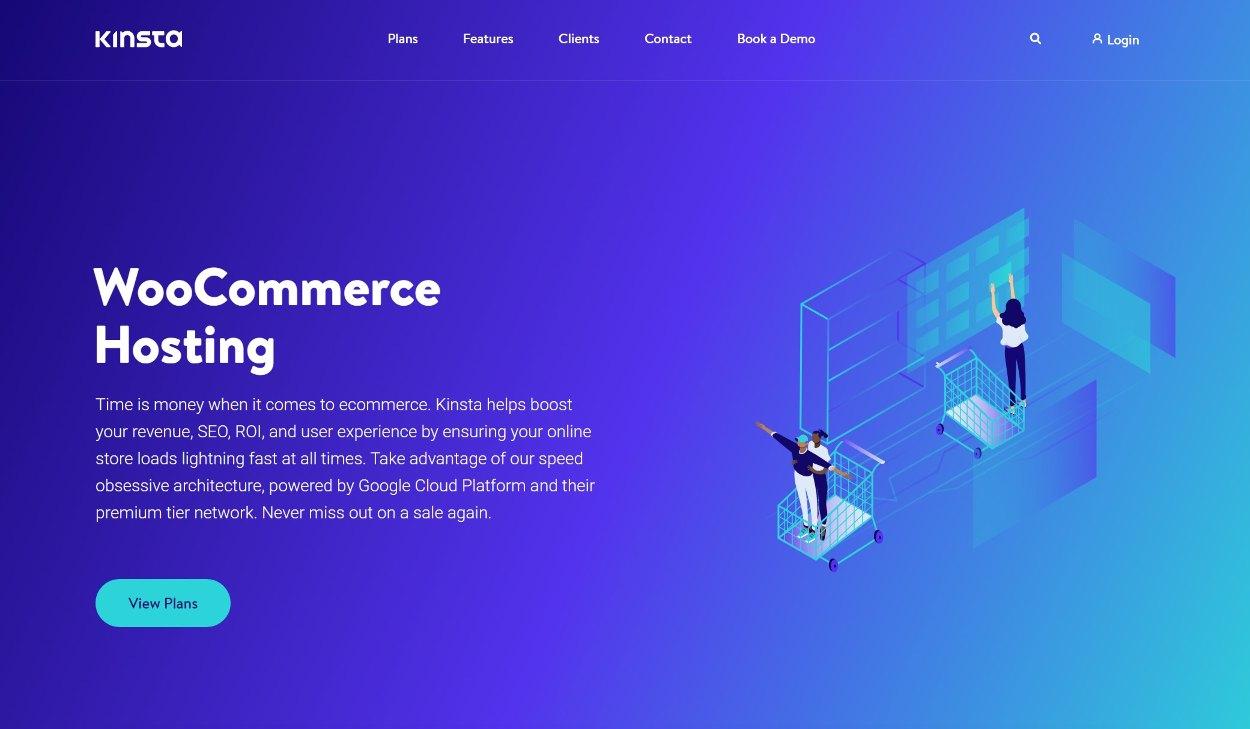 Kinsta WooCommerce hosting