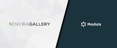 Envira Gallery vs Modula Comparison: Best WordPress Gallery Plugin?